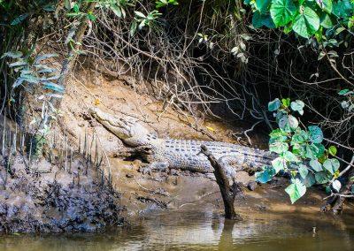 Australië | Reisfotografie